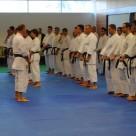 În faţa lui Sensei, grupul compact al instructorilor de club, apoi restul centurilor negre